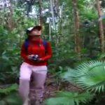 Kawasan Taman Nasional Aketajawe Lolobata - Halmahera - Maluku Utara - youtube