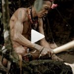 tradisi suku mentawai