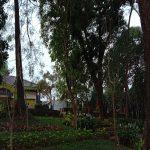 Taman Kota Bogor